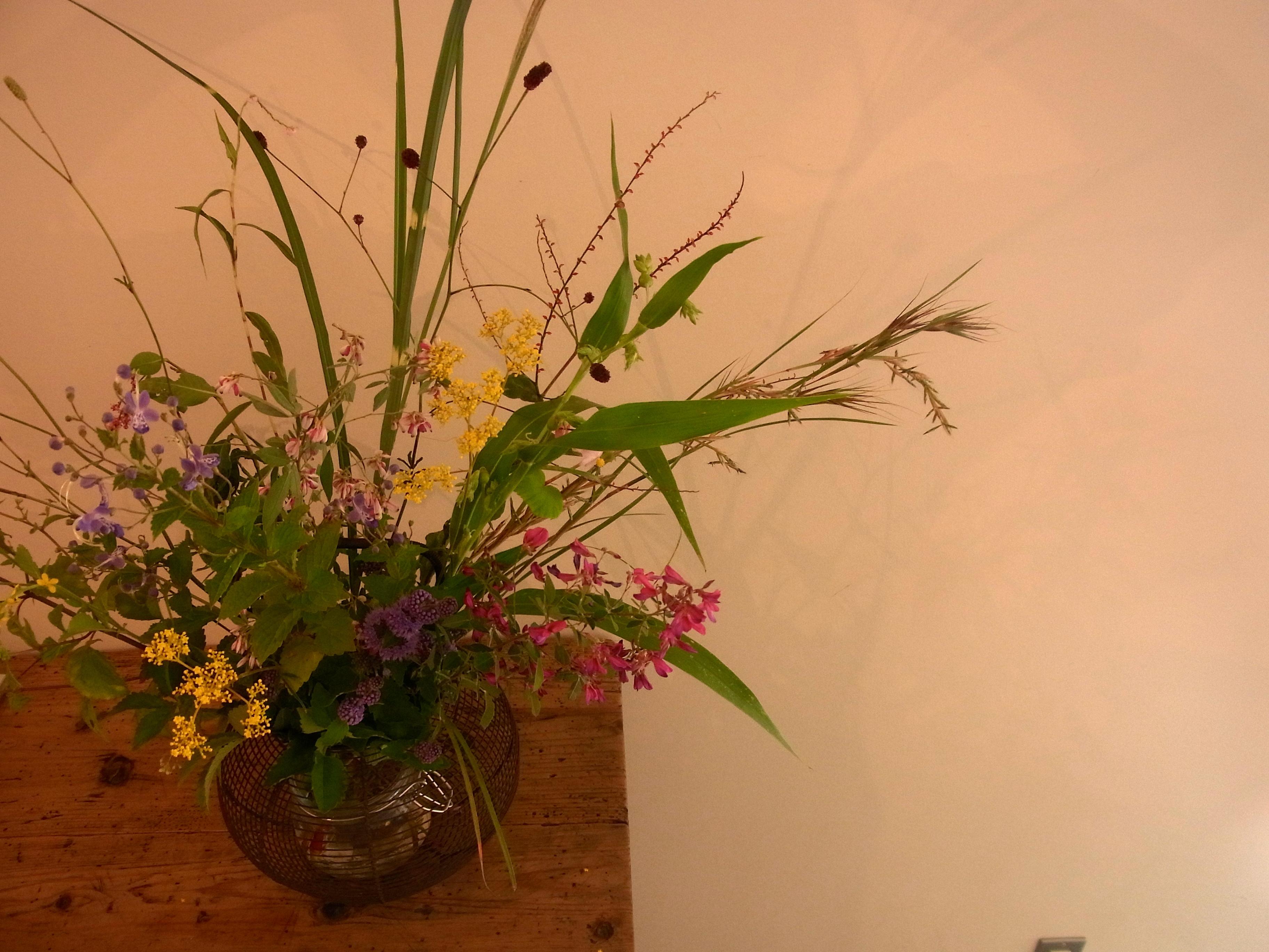 2014.9.21 秋の野花