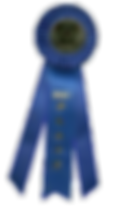 DWI Ribbon Award.png