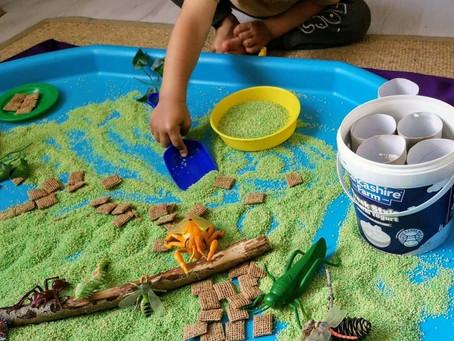 Insect tuff tray activity ideas