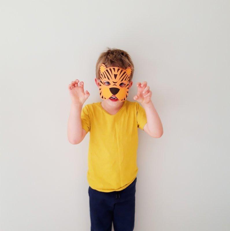 Boy in tiger dress up