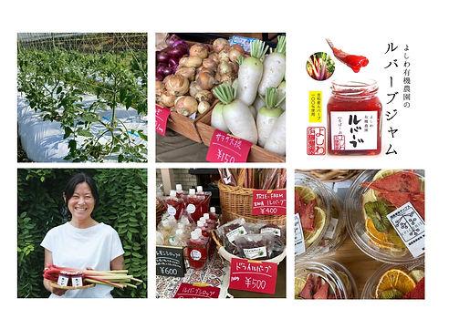 <受付終了>【オンライン授業 #1】吉和からルバーブを!〜よしわ有機農園 石橋瑠美子先生~