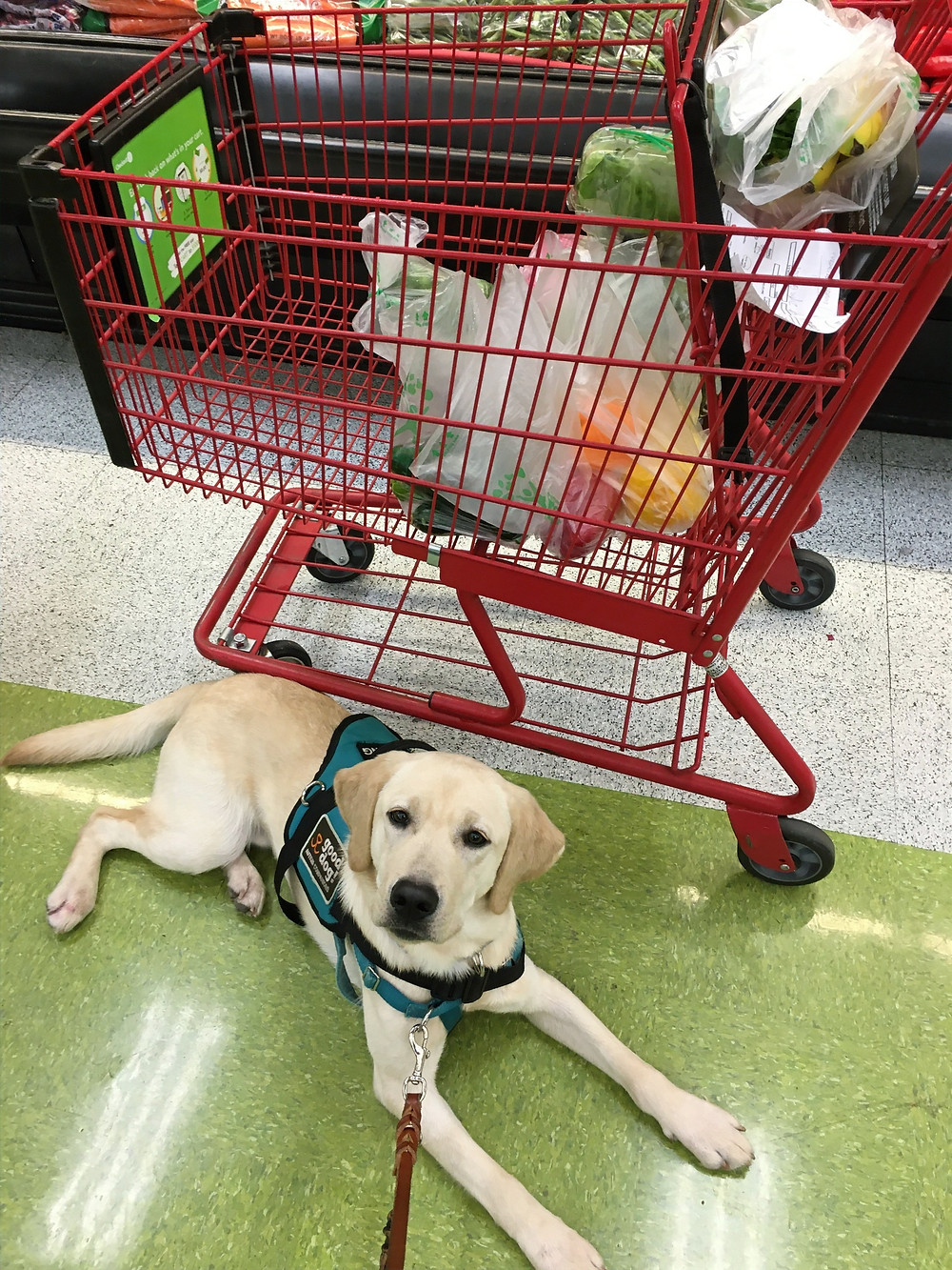 Bubba training in the grocery store