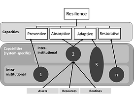 Resilience Capabilities