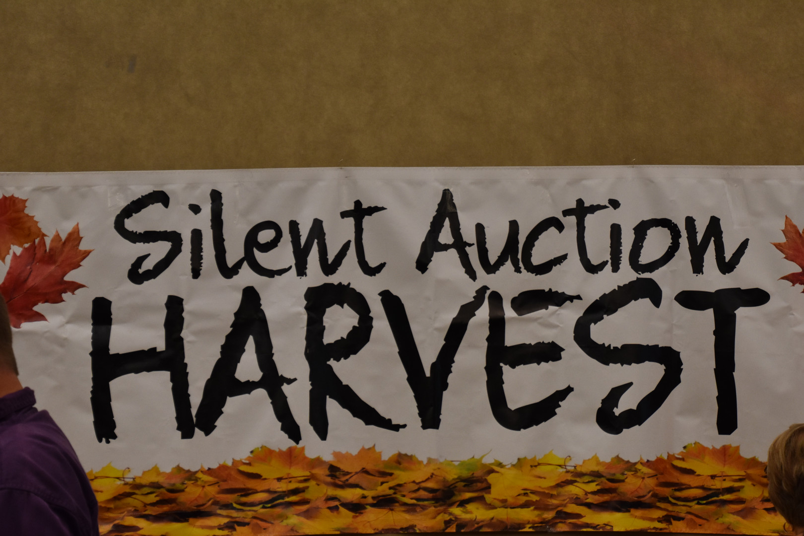 Over 100 auction items to bid on!