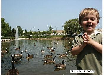 Early Learner StepUp2Start #Autismmadeeasier 7-05 ducks and geese.jpg