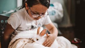 Enseigner la Bonne Nouvelle à nos enfants en toute simplicité