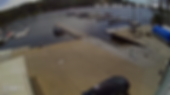 foxcam1.png
