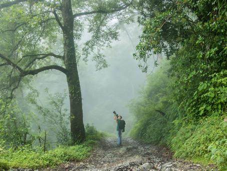 Birding in Gurje Bhanjyang