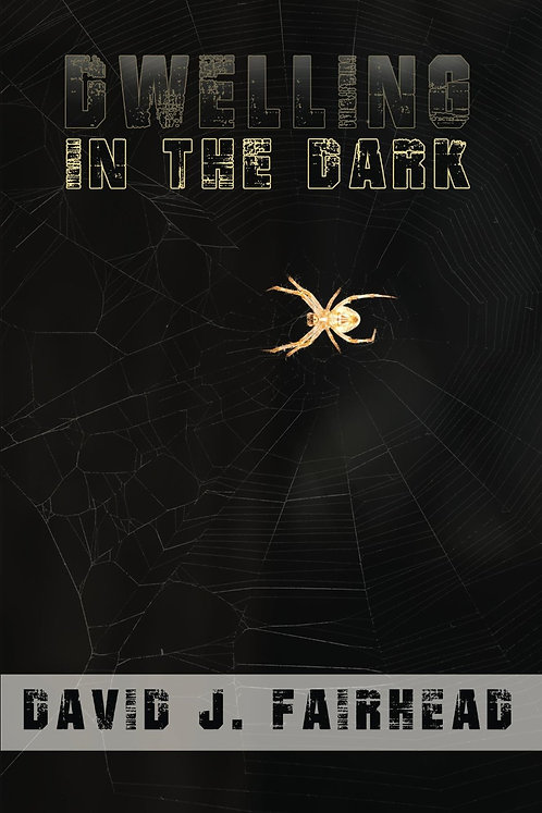 Dwelling in the Dark by David J. Fairhead (paperback)