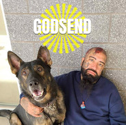 Godsend (The book)