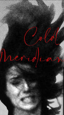 Cold Meridian (2020) - 6/10