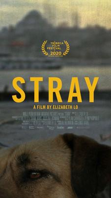 Stray (2020) - 7/10