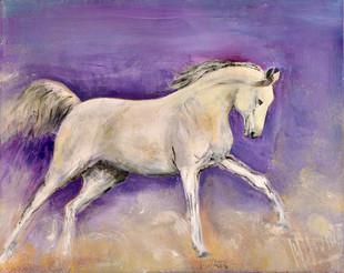 Wit paard | schilderij in acrylverf | 70 x 90 cm