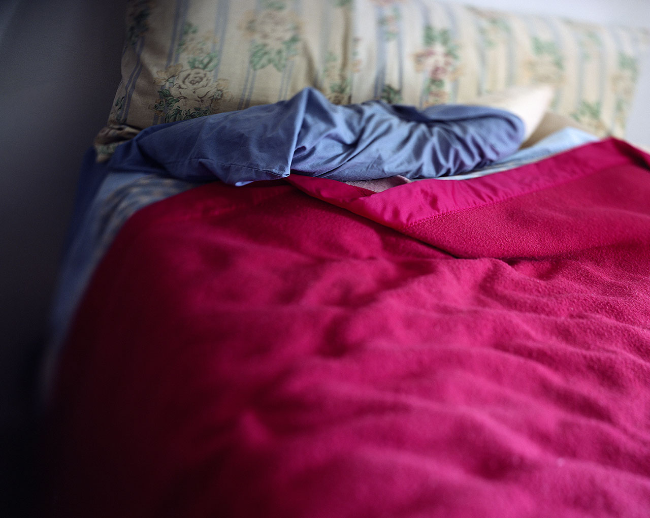 Sooner's Pink Blanket