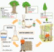持続可能な循環型の生産