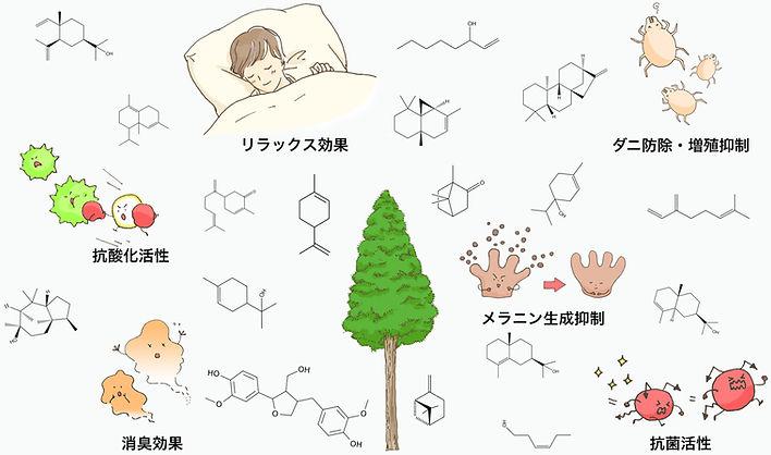 リラックス効果|消臭効果|抗酸化|ダニ防除|増殖抑制|メラニン生成抑制|抗菌活性