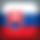 Slovakia-icon.png