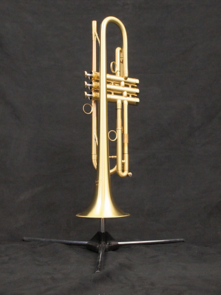 P.Mauriat Bb Trumpet PMT-700M