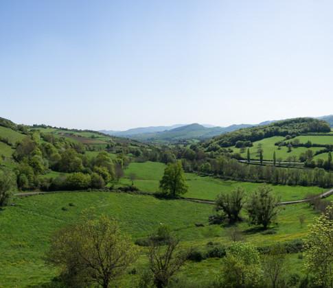Panorama_vue_sur_la_Bourgogne_du_Sud