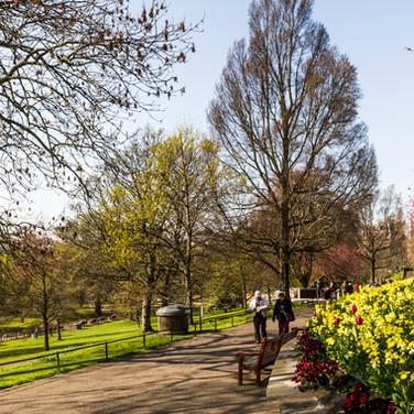 Princes Street Garden - April 2019 - Sig