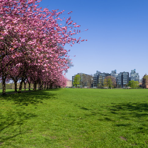 Meadow Park Panorama - April 2019 - SIGN
