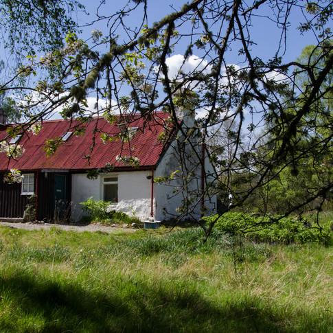 Cottages - Rothiemurchus