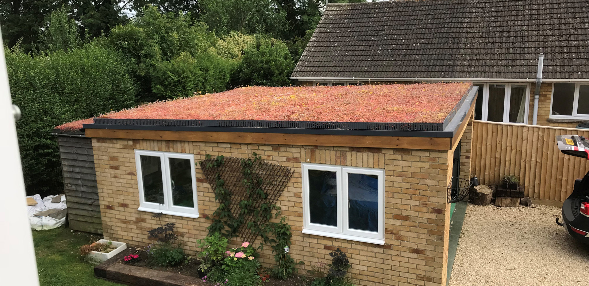 A sedum roof in the autumn at Great Somerford