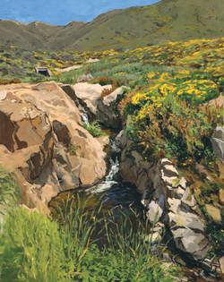 Garrapata Creek
