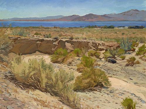 North Shore Desert Wash
