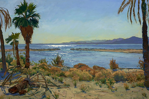 Salton Sea Sparkle Print