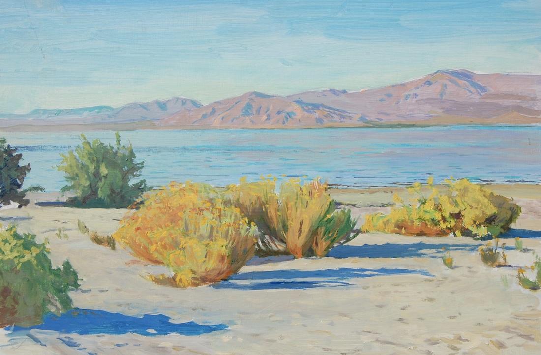 Warm Color, Salton Sea