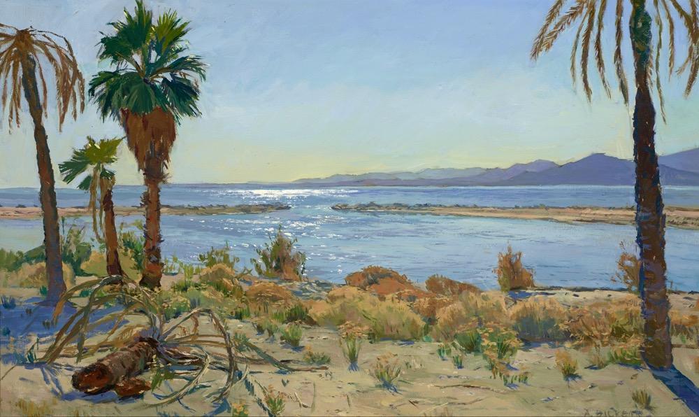 North Shore View