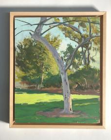 Irvine Park Tree