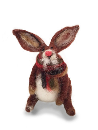 Tavcan Bey / Mr.John Rabbit