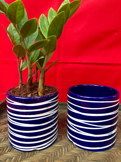 Blue Cheer Planter