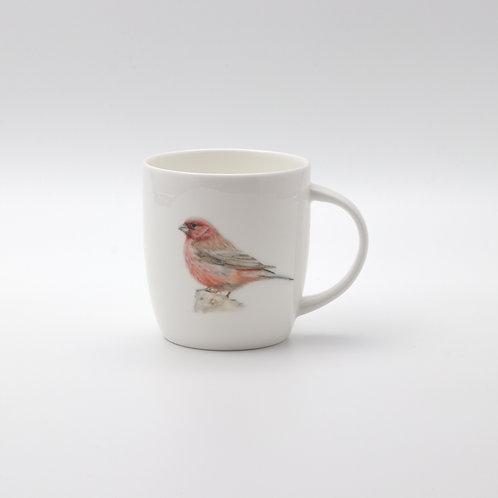 Sinai Rosefinch mug  ספל ורדית סיני