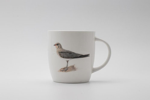 Collared Pratincole mug   ספל שדמית אדומת כנף