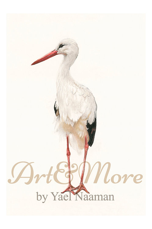 Small White Stork Art Print
