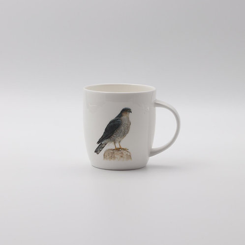 Eurasian Sparrowhawk mug ספל נץ מצוי