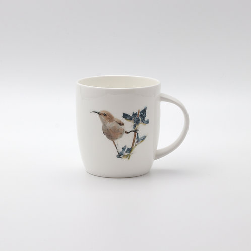 Palestine sunbird female,  mug  ספל צופית נקבה