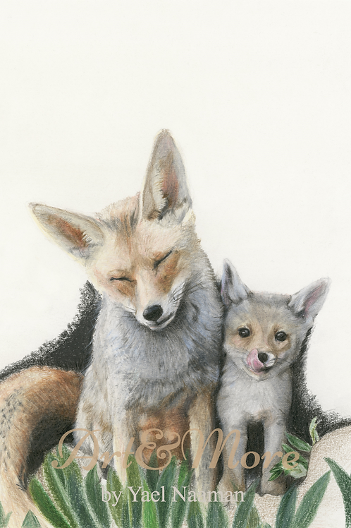 Small Mother fox and cub Art Print