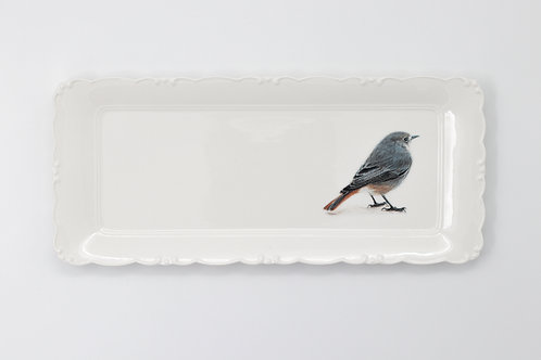 Black Redstart Platter  מגש חכלילית סלעים