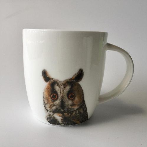 Long eared owl  mug   ספל ינשוף עצים