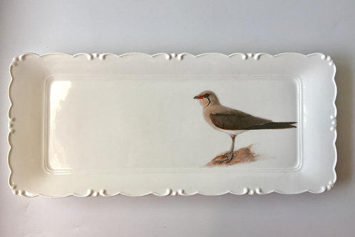 Collared Pratincole Platter   מגש שדמית אדומת כנף