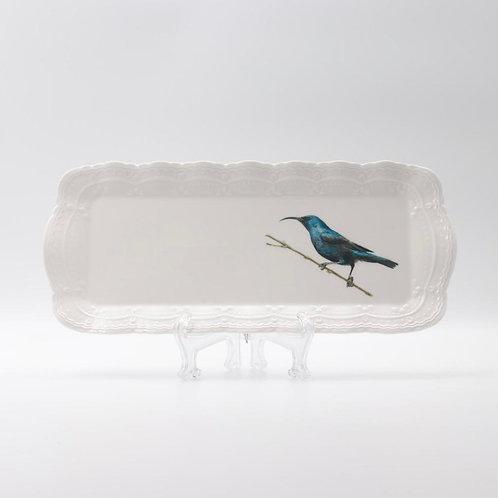 Palestine Sunbird, male, Platter  מגש צופית זכר