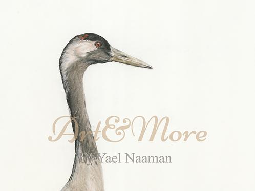 Large Common crane (portrait) Art print
