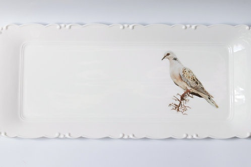 Turtle Dove Platter   מגש תור מצוי