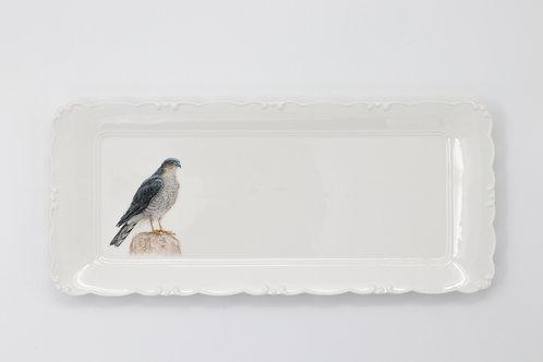 Eurasian Sparrowhawk Platter  מגש נץ מצוי