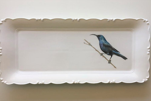 Palestine sunbird male, Platter  מגש צופית זכר