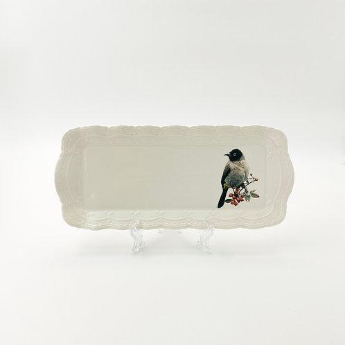 White spectacled Bulbul Platter  מגש בולבול